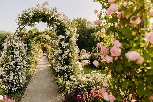 Ruzova zahrada, rozarium v Dolnej Krupej