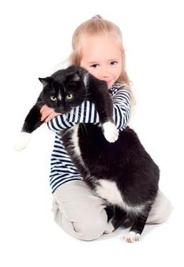 Mačací lekár? Ako funguje liečba mačkou.