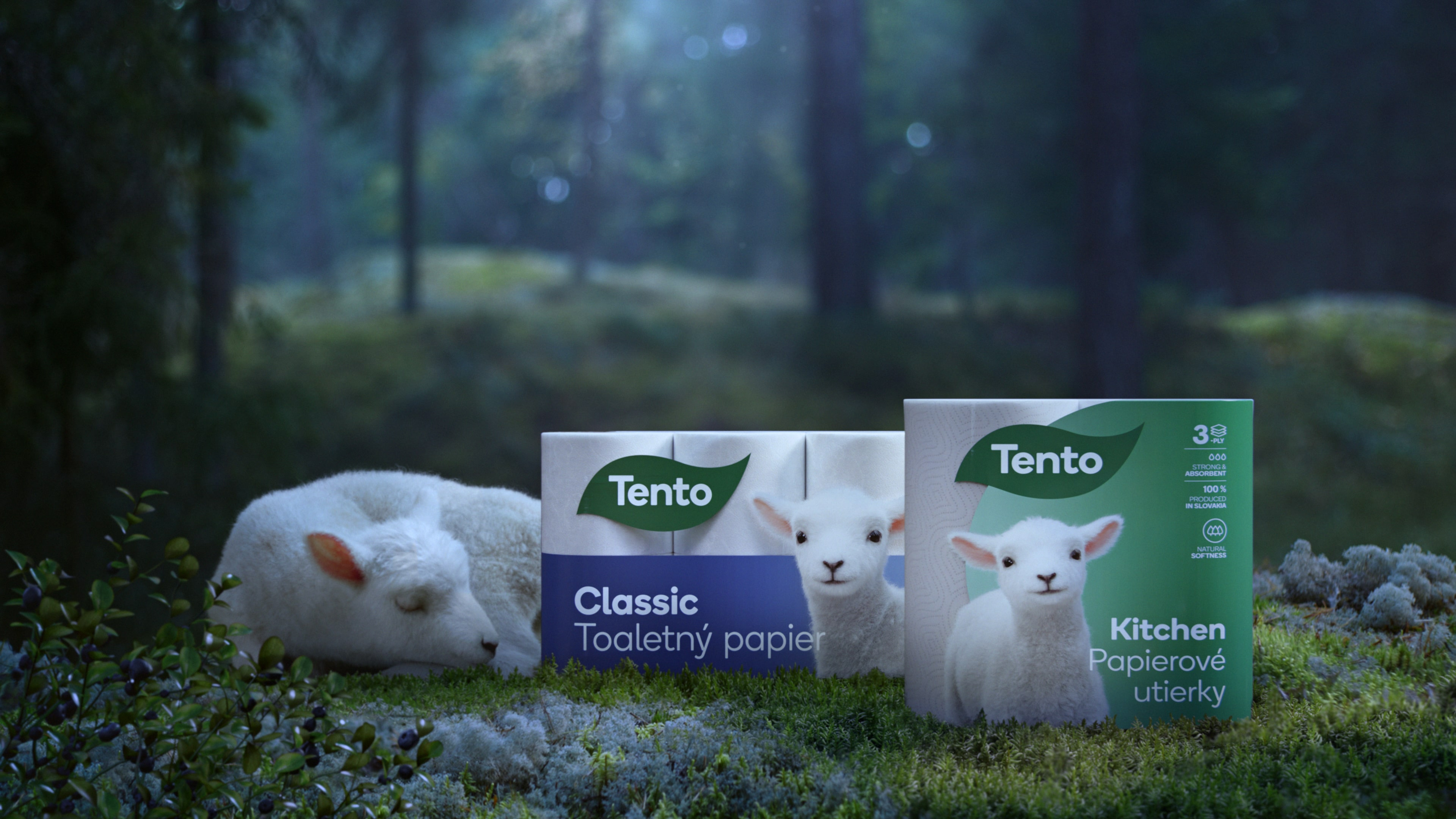 Toaletný papier vyrábaný udržateľným spôsobom