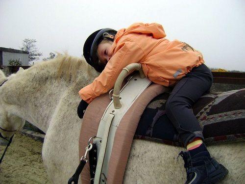 Kôň ako doktor detí