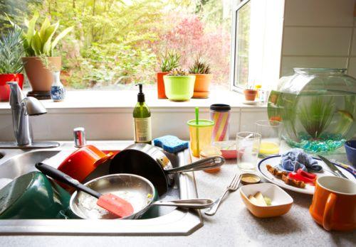Kuchyňa: Raj pre baktérie a alergény!