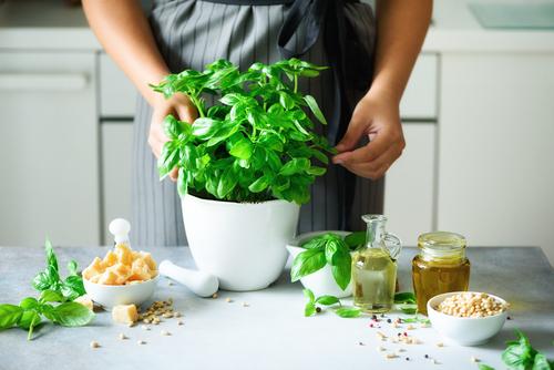 Jesenné antidepresíva: bylinky v kuchyni. Čo robiť, aby nám nezvädli?