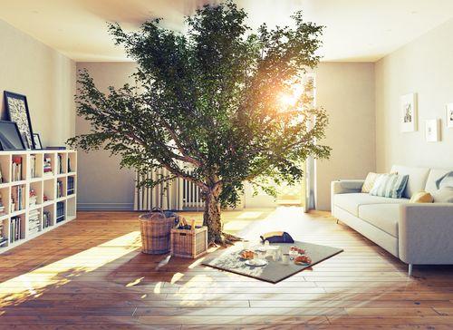 10 eko-priateľských nastavení mojej domácnosti (a neulietavam do extrému)