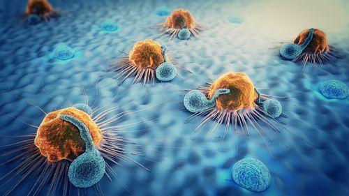 Čo je koronavírus a ako sa ma týka