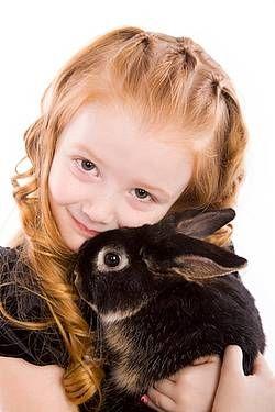 Čo potrebujeme pre škrečka, morča a králika?