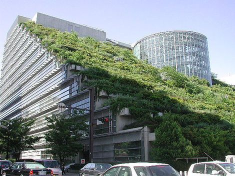 Zelené strechy. Nie